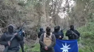 Resistance Territorial Mapuche (RTM)